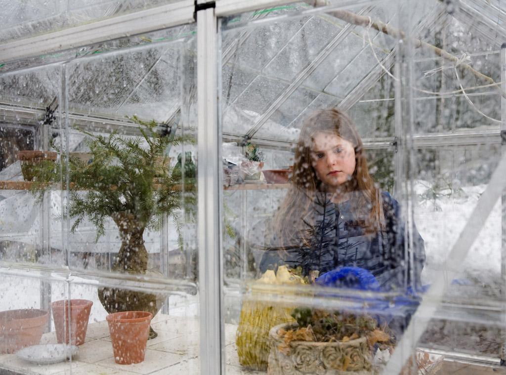 Untitled (greenhouse)